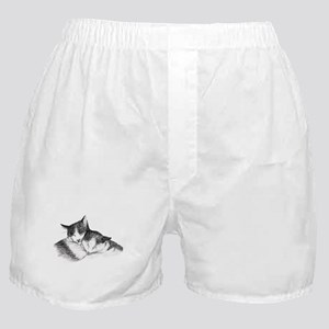 Cat Nap Snuggle II Boxer Shorts