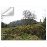Irish gorse Wall Decals