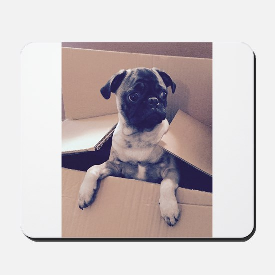 Pugsley The Pug Puppy In A Box Mousepad