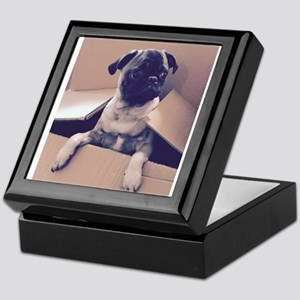 Pugsley The Pug Puppy In A Box Keepsake Box