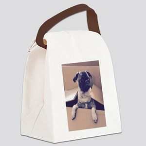 Pugsley The Pug Puppy In A Box Canvas Lunch Bag