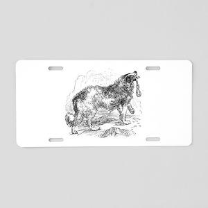 Vintage Border Collie Dog D Aluminum License Plate