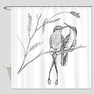 Vintage Hummingbirds Racquet Tail B Shower Curtain