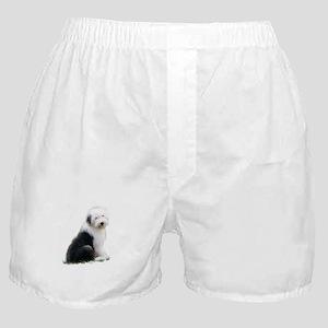 old english sheepdog puppy sitting Boxer Shorts
