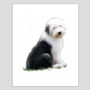 old english sheepdog puppy sitting Posters