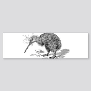 Vintage Kiwi Bird New Zealand Birds Bumper Sticker