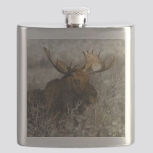 moose 2a Flask