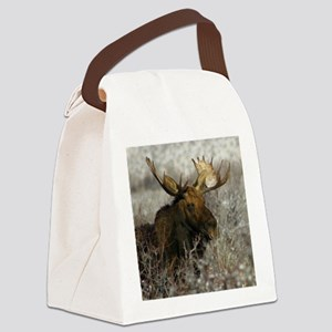 moose 2a Canvas Lunch Bag
