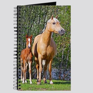 Mother and Foal Journal