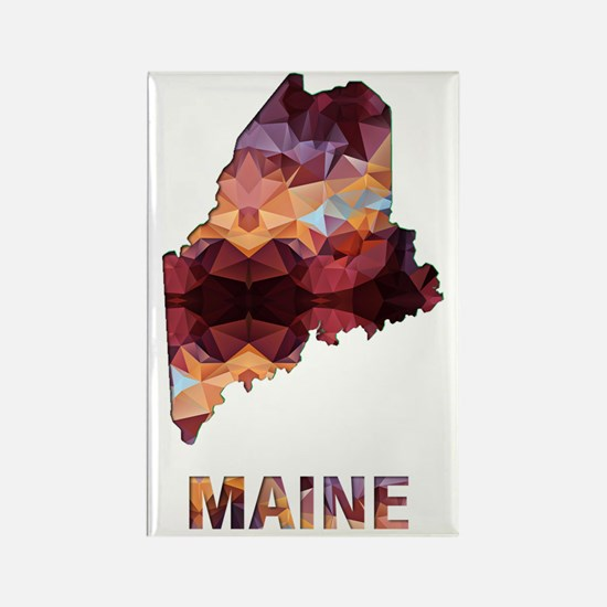 Cute Maine coon Rectangle Magnet