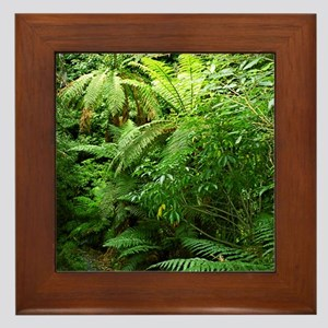 Punga Tree Ferns NZ Framed Tile