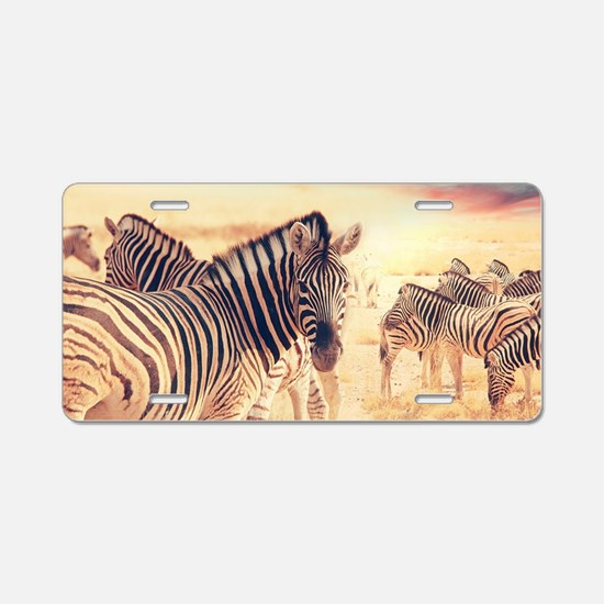 Beautiful Zebras Aluminum License Plate