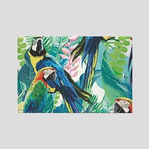 Colorful Parrots Magnets