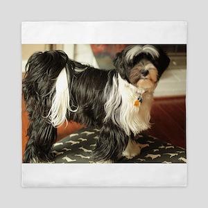 Konnor black and white Tibetan terrier Queen Duvet