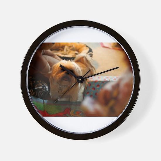 Koko blond Lhasa apso among gift wrap h Wall Clock