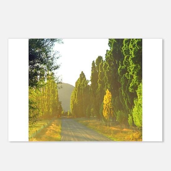 Morning LIght Wanaka NZ Postcards (Package of 8)