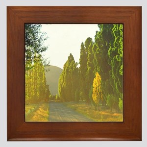 Morning LIght Wanaka NZ Framed Tile