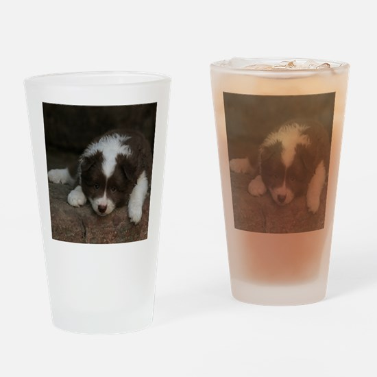 IcelandicSheepdog_20171201_by_JAMFo Drinking Glass