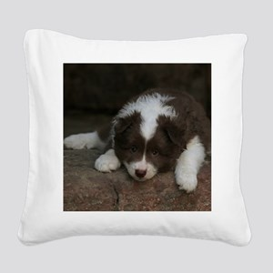 IcelandicSheepdog_20171201_by Square Canvas Pillow
