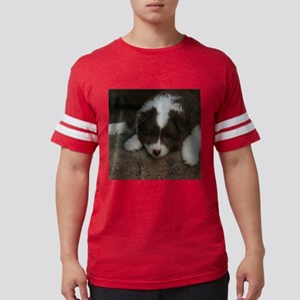 IcelandicSheepdog_20171201_by_JAMFoto T-Shirt