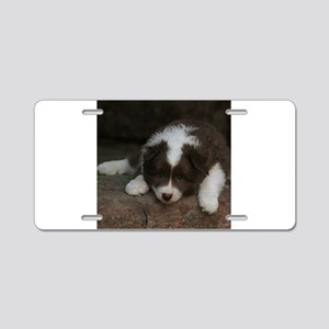 IcelandicSheepdog_20171201_ Aluminum License Plate