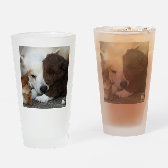 Cute Icelandic sheepdog Drinking Glass