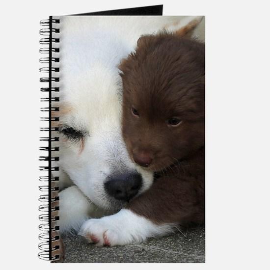 Funny Animal portraits Journal