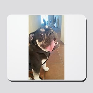 Happy! Chuck the Old English Bulldog Mousepad