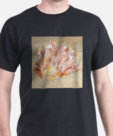 holiday mood, major Asian clam in fine san T-Shirt