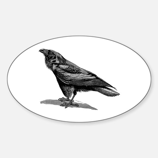 Vintage Raven Crow Black Bird Black White Decal
