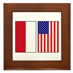 Indonesian & US Flags Framed Tile