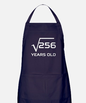 Square Root 16 Years Old Apron (dark)