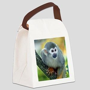 Monkey004 Canvas Lunch Bag