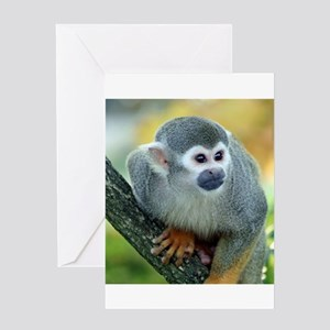 Monkey004 Greeting Cards