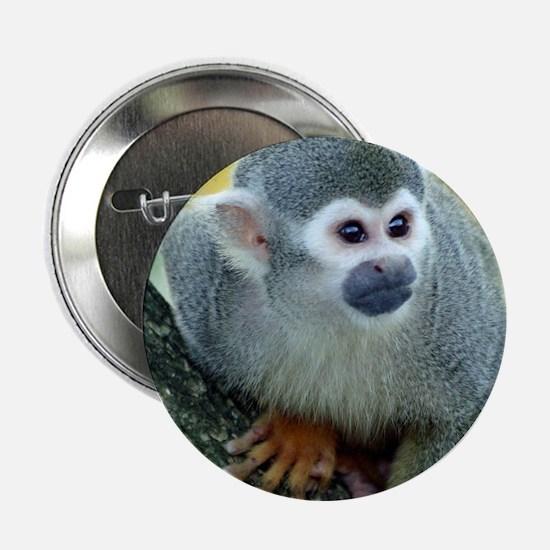 """Monkey004 2.25"""" Button"""