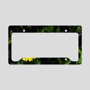 Single Yellow One License Plate Holder