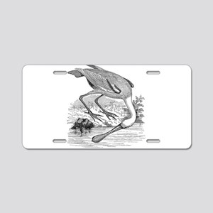 Vintage Spoonbill Tropical Aluminum License Plate