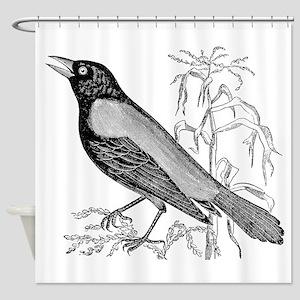 Vintage Crow Blackbird Bird Black W Shower Curtain