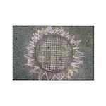 Manhole Cover Sun Magnets