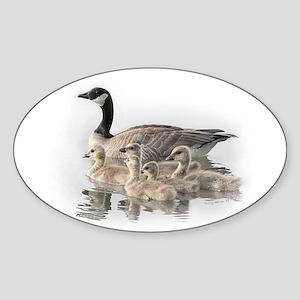 Canada Goose Oval Sticker