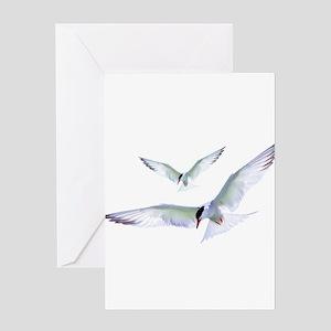 Turn Tern Turn Greeting Cards