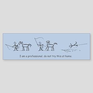 I am a Professional: Lunging / Bumper Sticker