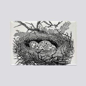 Vintage Speckled Eggs Bird Nest Black Whit Magnets