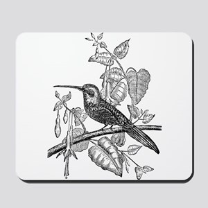 Vintage Tailed Jacamar Bird Black White Mousepad
