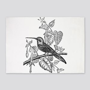 Vintage Tailed Jacamar Bird Black W 5'x7'Area Rug