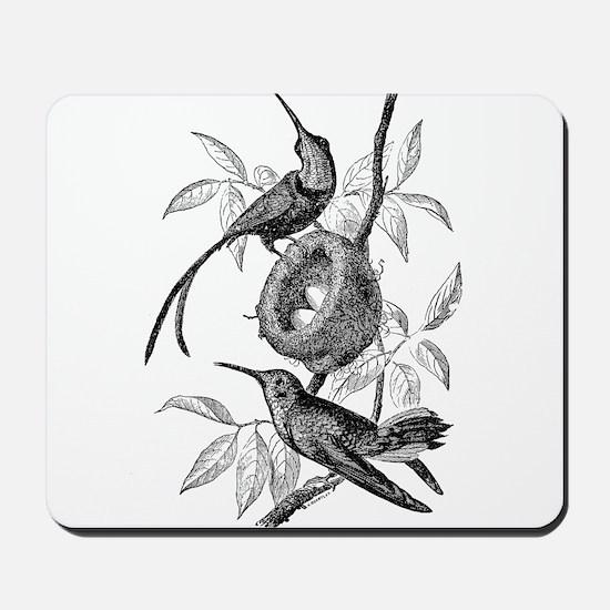 Vintage Hummingbird Bird Bird Black Whit Mousepad