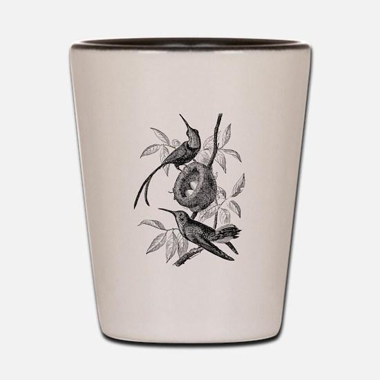 Vintage Hummingbird Bird Bird Black Whi Shot Glass