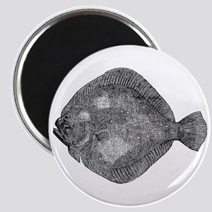 Vintage Flounder Fish Fishes Black White Magnets