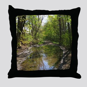 Wet watery trail scene Throw Pillow