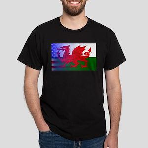 Wales Dragon Stars and Stripes T-Shirt